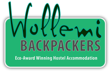 wollemi-backpackers